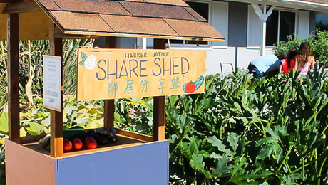 Frugal Happy: Introducing the Share Shed