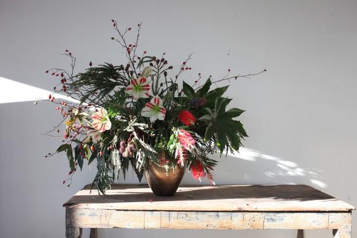 Trending on Gardenista: Holiday Houseplants
