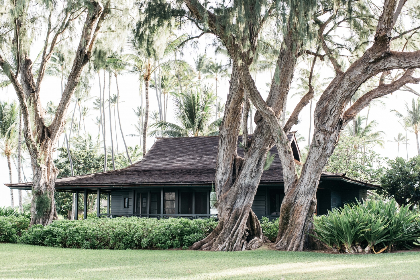 A Vintage Hawaiian Beach Cottage, Restored and Ready for Relaxation
