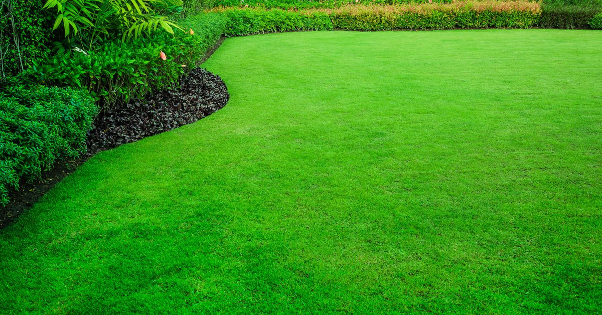 The Best Lawn Care in Houston