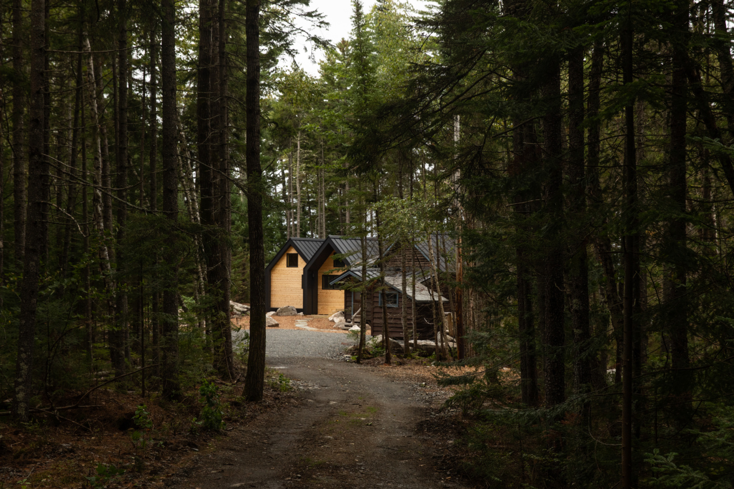 Rock Camp: Old-Meets-New Lake Cabins by an Upstart Maine Architect