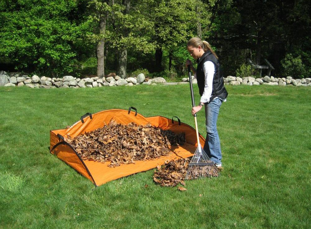 3 Simple Tools to Pick Up Fall Leaves